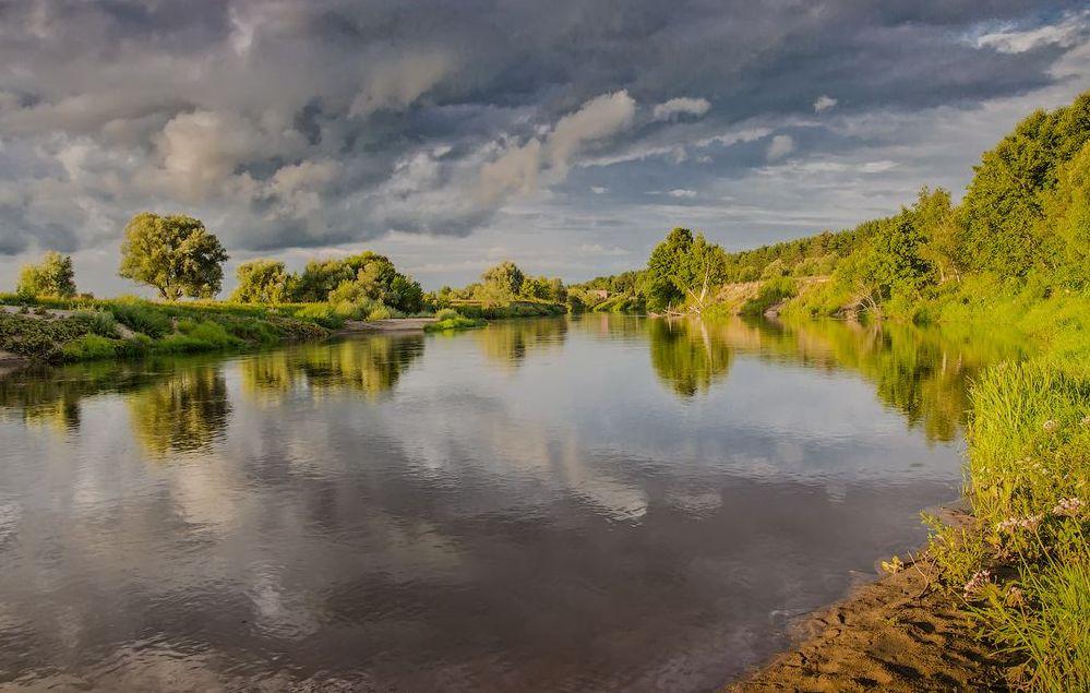река жиздра фото текстура