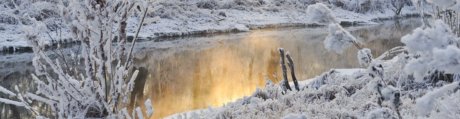 snow-21979_1920crop